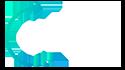 Dibiz Logo